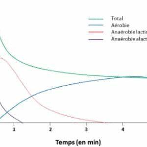 Aérobie – Anaérobie lactique – Anaérobie alactique